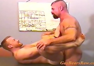 dilettante gay bears barebacking
