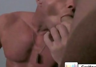 gavins spa anal