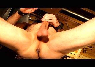 pussyboy degradation and use cbt and whipping