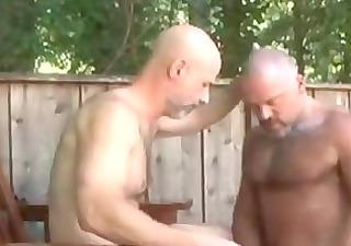 musclebears