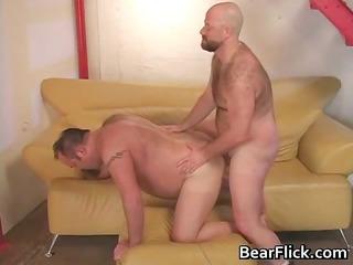humping gay gay bears drilling fat part7