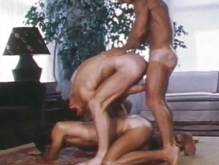 sexy vintage bushy homosexual guys drilling