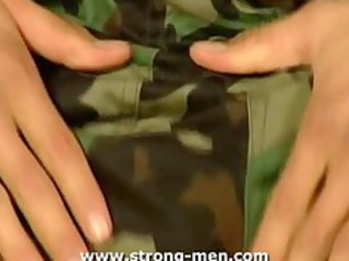 dilettante military stud